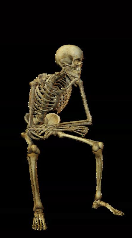 tubeleri, insan iskeleti tube resimleri, insan kemik tube resimleri