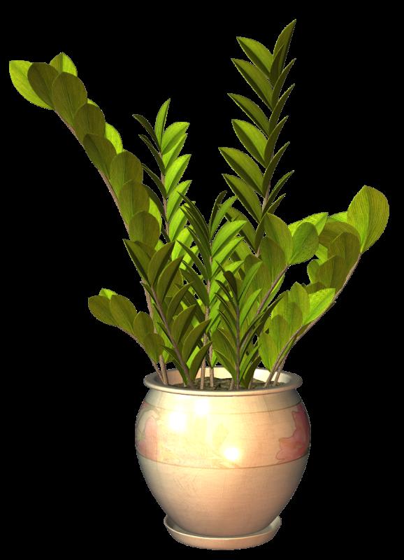 tube plante arbuste en pot. Black Bedroom Furniture Sets. Home Design Ideas